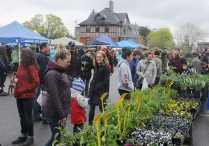 Friends' Plant Sale