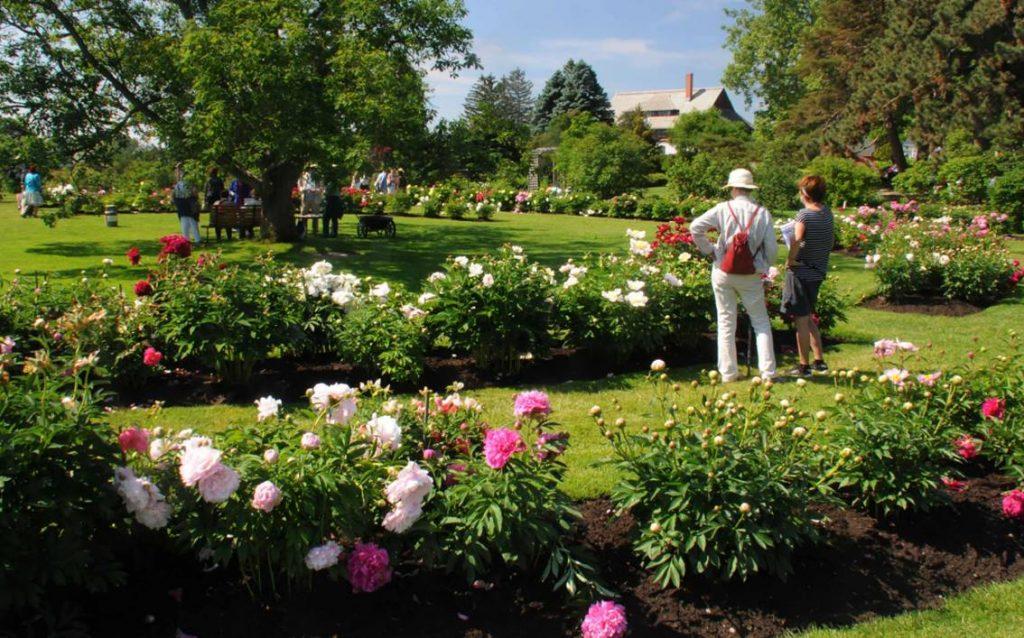 June Blooms! Strolling Through Garden History