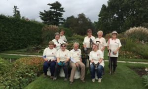 Perennials garden team