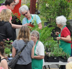 plant sale-10may15_2146